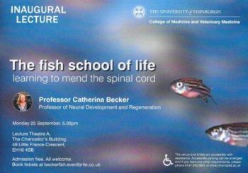 fish-school-for-life